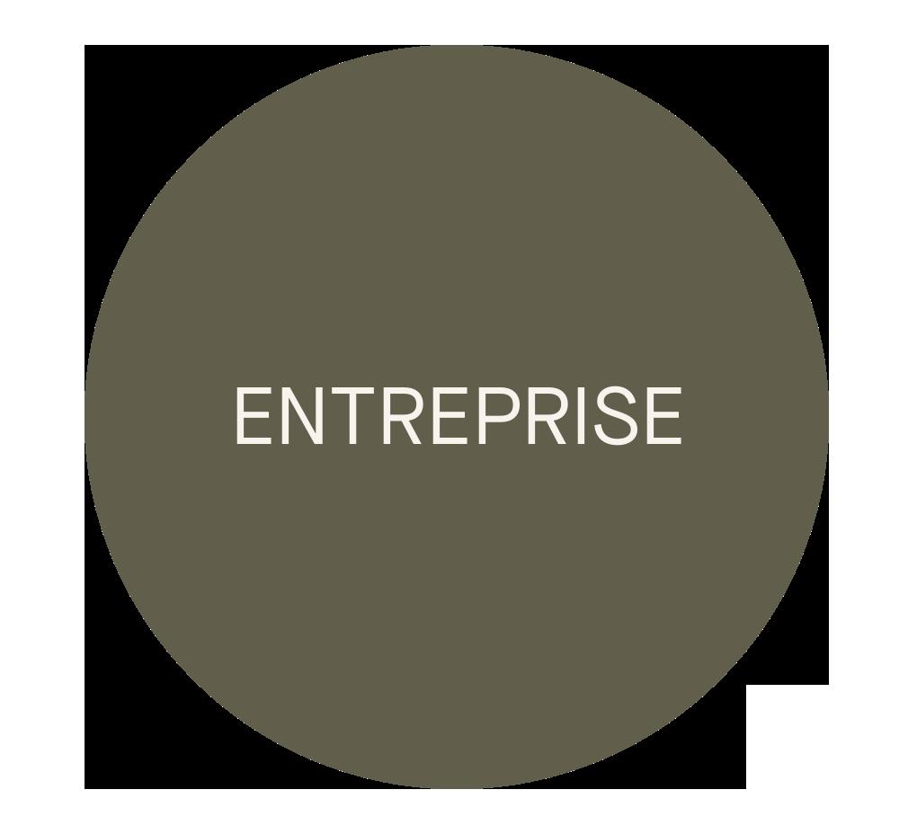 Icône: Entreprise