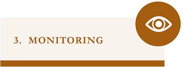 Monitoring - icon