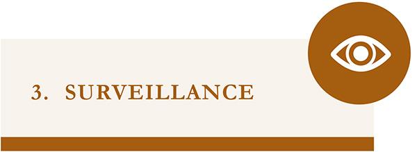 surveillance - icone